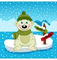 polar bear on ice floe vector image