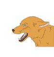 portrait of a fox vector image vector image