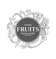 poster template frame with hand drawn fruits vector image