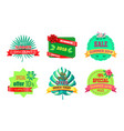 best summer discount logos with tropical plants vector image