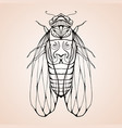 cicada with boho pattern element for color vector image vector image