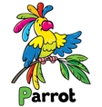 Funny parrot Alphabet P vector image vector image