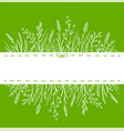 green background with wild herbs and place for vector image vector image