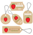 labels with various fruitsfor strawberry vector image vector image