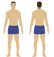 man body vector image vector image