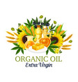 organic oil with natural food ingredients vector image vector image