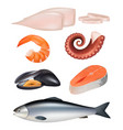 seafood meal fish octopus natural protein diet vector image