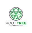 tree root symbol logo vector image vector image