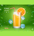 fresh orange and glass with juice and ice cubes vector image