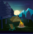 night campfire wooden landscape with tent and vector image vector image