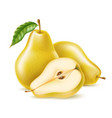 realistic yellow ripe pear healthy food vector image vector image