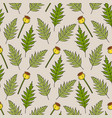 seamless pattern with poppy leaves and seed boxes vector image vector image