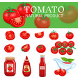 set of tomatoes and sauces vector image vector image