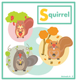 Squirrel with friends English A to Z vector image vector image