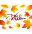 autumn sale banner background with fall leaves vector image