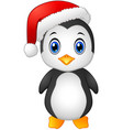 christmas penguin with santa hat vector image vector image