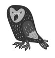 design with a a cute and friendly owl vector image vector image