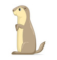 gopher sitting on a white background vector image vector image