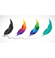 group of feathers vector image vector image