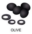 olive icon isometric style vector image