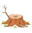 root of tree cartoon vector image