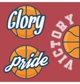 Set of Three Basketball Team Logo with Ball vector image