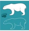 White Bear vector image vector image