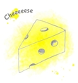 Abstract decorative cheese sketch vector image