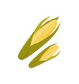 cartoon style corn cob ear with green leaves vector image