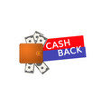 cash back money back from purchase vector image vector image