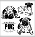 pug - set isolated on white vector image vector image
