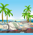scene with seals and plastic bags on beach vector image