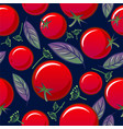 seamless pattern tomato basil dill spicy herbs vector image