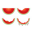 set of watermelon fruit eating stage vector image