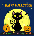 happy halloween the halloween cat sits against vector image