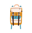 modern colorful backpack with straps and pockets vector image