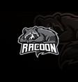 raccoon mascot sport logo design vector image vector image
