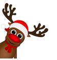 Reindeer peeking sideways vector image vector image