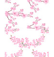 sakura two pictures with delicate lush flowers vector image vector image
