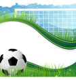 Soccer gate and ball vector image