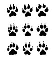 print of paw of dogs vector image