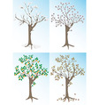 Apricot tree and the seasons vector image