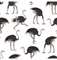cartoon ostrich bird seamless pattern background vector image vector image