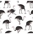 cartoon ostrich bird seamless pattern background vector image