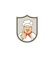 Chef Cook Happy Thumbs Up Shield Retro vector image vector image