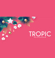 tropic summer exotic design with palm leaves vector image