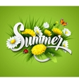 Fresh summer background with grass dandelions and vector image