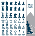 chess master vector image
