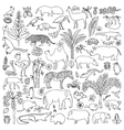 doodle tropic animals vector image vector image