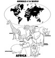 educational african animals color book vector image vector image